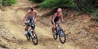 biking-lg